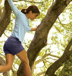 title nine tree climbing